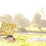 Della: Productos Dell sólo para mujeres