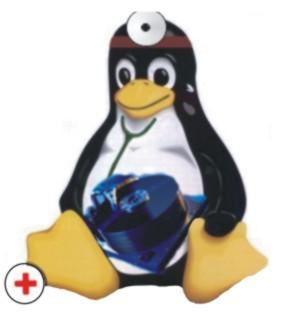 linux-ntfs4