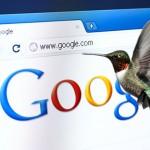 que-es-google-hummingbird